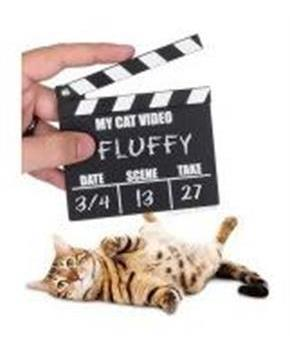 Cat Video Clapperboard Accessory