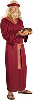 Biblical Times Wiseman Costume Adult