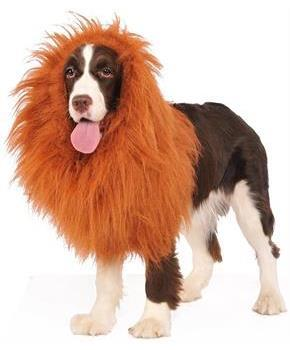 Deluxe Lion's Mane Pet Costume, One Size