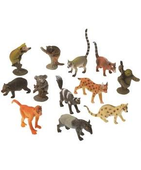 Rain Forest Animals (Include 12 Units)