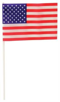Usa Flags/4X6-Plastic (Include 12 Units)