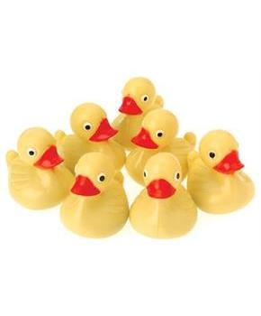 Duck Pond Floaters/Yellow (Include 12 Units)