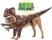 Animal Planet Raptor Dinosaur Dog Pet Costume