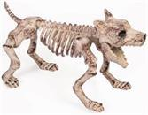 Bone Skeleton Dog Halloween Prop DÃcor