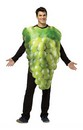 Get Real Bunch Of Grapes Costume Adult: Green