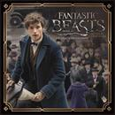 "Fantastic Beasts 2017 7""x7"" Mini Calendar"