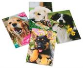 Dog Memo Pads (Include 12 Units)