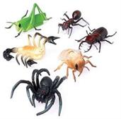 Insects/4 Inch (Include 12 Units)