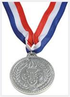 Silver Medals (Include 12 Units)