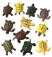 Mini Turtles (Include 12 Units)