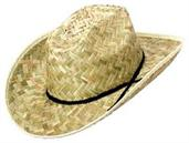 Barndance Hat (Include 1 Units)