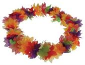 Deluxe Flower Leis/Rainbow (Include 1 Units)